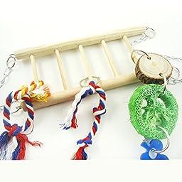 Bwogue Hammock Climber Ladder & Playbridge Gerbil or Hamster Cage Pet Toy