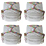 Heavy Wetter Baby Night Fitted Cloth Diaper with 2 Inserts, One Size 10-30 Lb, Hemp /Organic Cotton, 4-pack