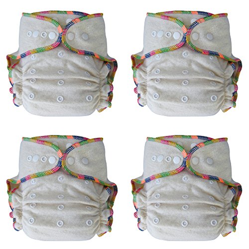 Heavy Wetter Baby Night Fitted Cloth Diaper with 2 Inserts, One Size 10-30 Lb, Hemp /Organic Cotton, 4-pack ()