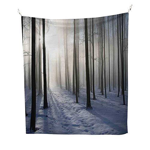 (Forestspace tapestryThin Snow Covered Path in Misty Winter Forest with Morning Sun Image Print 54W x 84L inch Wall Hanging tapestryWhite and Dark Brown)