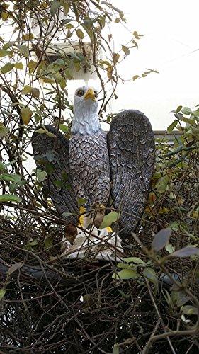ZILIN Plastic Bald Eagle Bird Scaring Bird Deterrent bird repellents hawk (Outdoor Eagle)