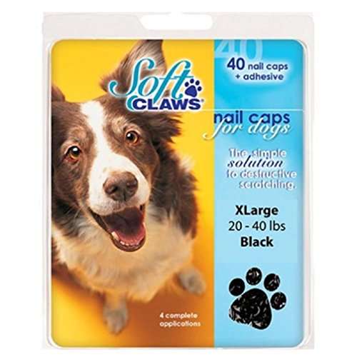 Image of Soft Claws Dog and Cat Nail Caps Take Home Kit, X-Large, Black