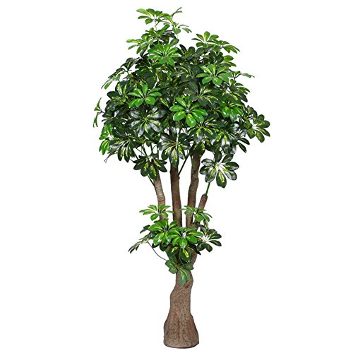 Artificial Plants Money Tree 160cm Tall, Large Silk Green Leaves Pachira Aquatica Plant, With No Pot(774#) (Big Money Tree Plant)