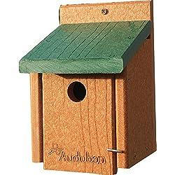 AUDUBON/WOODLINK Going Green Wren Bird House Tan/Green 5.75X5.5X8 in