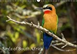 Birds of South Africa 2018: Variety of Birds from South Africa (Calvendo Animals)