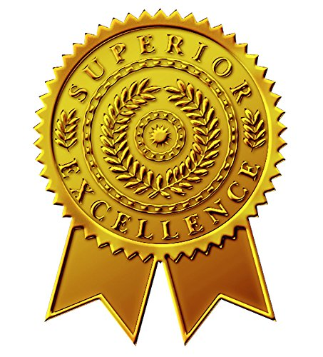 Great Ribbon (Great Papers! Starburst Ribbon Embossed and Gold Foil Certificate Seal, 1.75