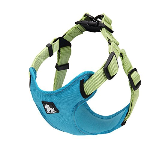 Powers Dogs Vest Harness,3M No Pull Adjustable Pet Reflective Harness By S (M, Blue) by Powers