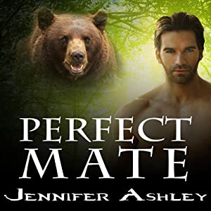 Perfect Mate Audiobook