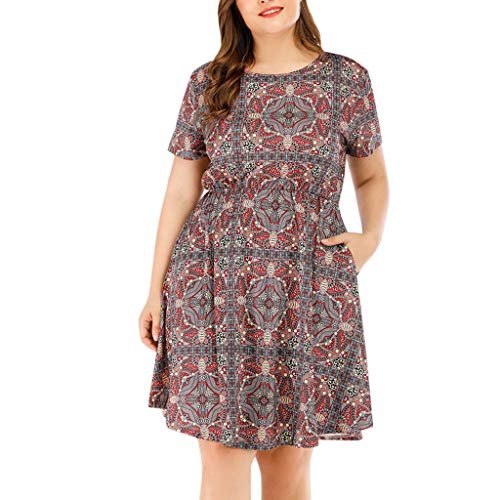 (New in Respctful✿Women's Short Sleeve V-Neck Floral Leopard Print Tunic Pleated Dress Ladies Plus Size Beach Dress)