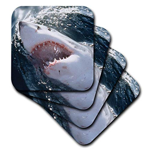 3dRose CST_209328_1 Great White Shark on Sea Soft Coasters (Set of 4)