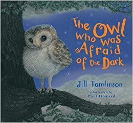Image result for the owl who was afraid of the dark