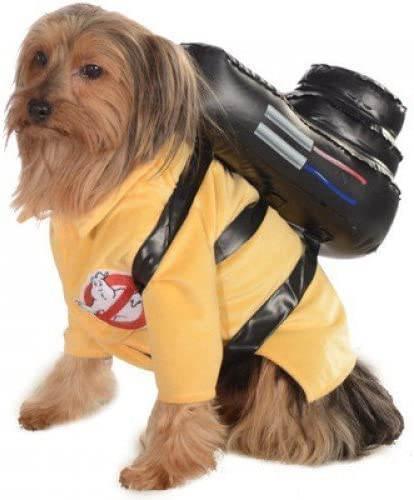 Oficial Mascota Perro Gato Cazafantasmas Disfraz de Halloween Ropa ...