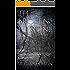 The Broken Heroine: (Formerly Beloved Evangeline) (The Broken Heroine Trilogy Book 1)