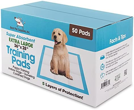 Extra Large Traning Best Pet Supplies