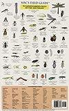 Southeast Garden Bugs, Craig MacGowan, 0898867479