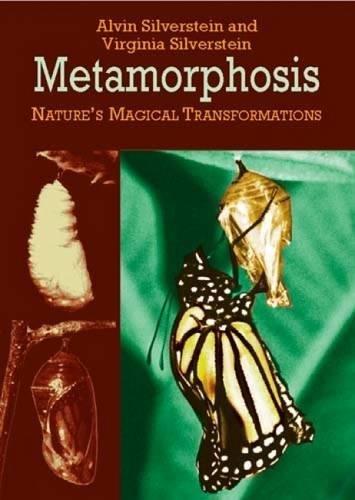 Download Metamorphosis: Nature's Magical Transformations (Dover Children's Science Books) pdf epub