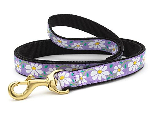 Up Country Daisy Dog Lead, 6', Wide Width 1 ea