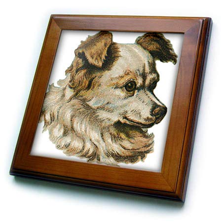 3dRose Cassie Peters Dogs - Vintage Toy Dog Terrier Type - 8x8 Framed Tile (ft_307002_1) -