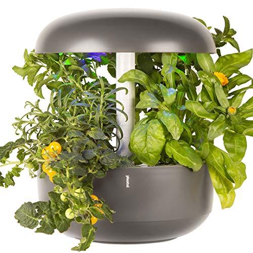 PLANTUI 6 Smart Garden Indoor Gardening for your Smart Home