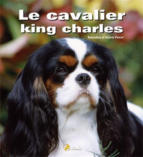 le cavalier King Charles by Amandine Parent