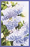 My Garden Visits, Justin Matott, 0345412516