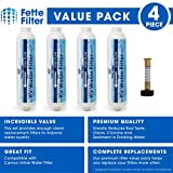 Fette Filter - RV & Marine Inline Water Filter with Flexible Hose Protector, Greatly Reduces Bad Taste, Odors, Chlorine and Sediment in Drinking Water. 4 - Pack
