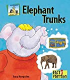 Elephant Trunks (Fact And Fiction)