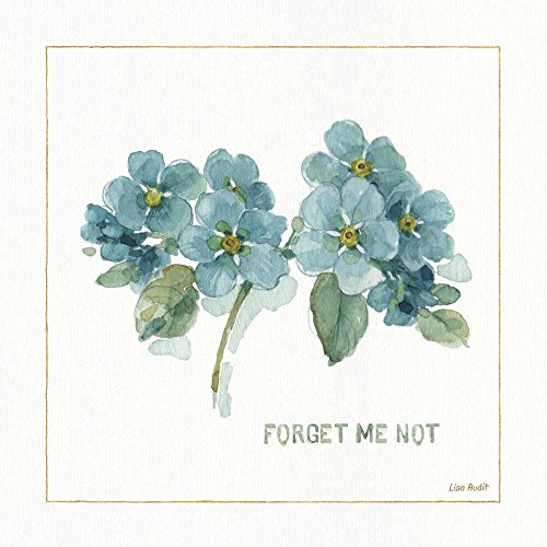 My Greenhouse Forget Me Not by Lisa Audit Art Imprint, 12 x 12 inches