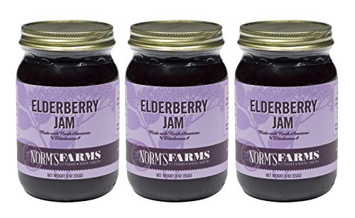 Norm's Farms Delicious and Flavorful Black Elderberry Jam, 9 Ounce Jar, Pack of 3