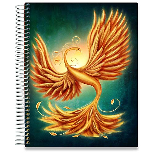 Tools4Wisdom 2019 Planner with Calendar - Weekly Monthly Daily Appointment Book - Dated Personal Organizer Spiral Bound with Tabs