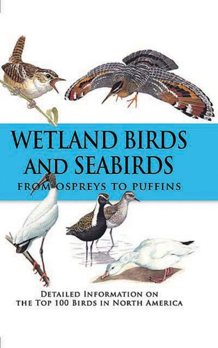 Wetland Birds and Seabirds: From Ospreys to Puffins