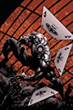 Image of Bullseye: Greatest Hits (Daredevil)