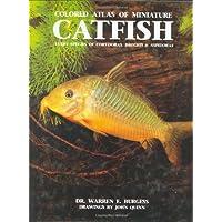Atlas of Miniature Catfish