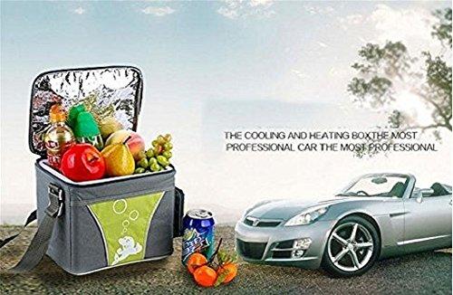 Auto Kühlschrank Saturn : Woyao deng kühlbox tragbar mini kühlschrank kühlschrank