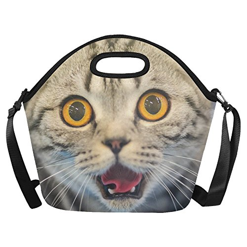 InterestPrint Funny Cat Large Reusable Insulated Neoprene Lunch Tote Bag Cooler 15.04
