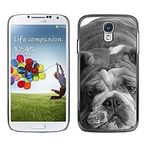 Be Good Phone Accessory // Dura Cáscara cubierta Protectora Caso Carcasa Funda de Protección para Samsung Galaxy S4 I9500 // English Bulldog Gray Black White Dog