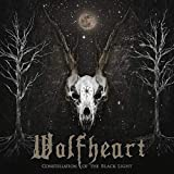 51ZZbcdnQPL. SL160  - Interview - Tuomas Saukkonen of Wolfheart