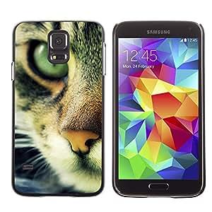 Paccase / SLIM PC / Aliminium Casa Carcasa Funda Case Cover - Chausie Ocicat Cat Serengeti Bengal - Samsung Galaxy S5 SM-G900