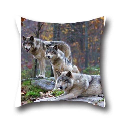 June Tian Allergy Pillow Encasement Pillow case Wolf Cotton Chevron Spike...