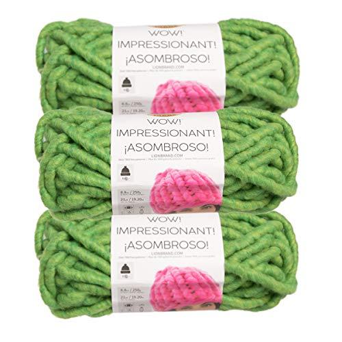 Wool Yarn Avocado - Lion Brand (3 Pack) Wow! Acrylic & Wool Soft Avocado Toast Green Yarn for Knitting Crocheting Jumbo #7