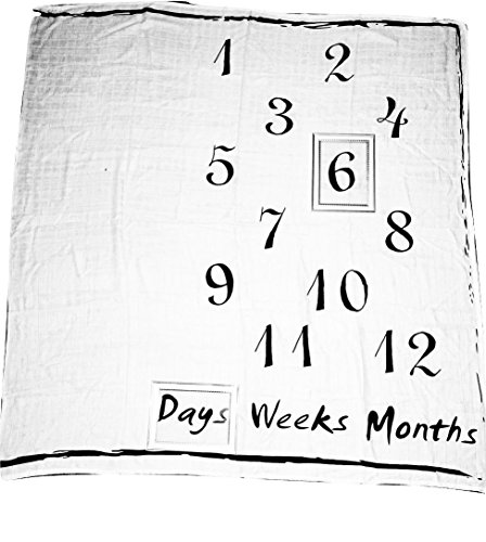 Baby Monthly Milestone Blanket,New baby gift, photo blanket, portrait blankets, white blanket,growth milestone blanket, baby stages blanket, throw blanket, baby development