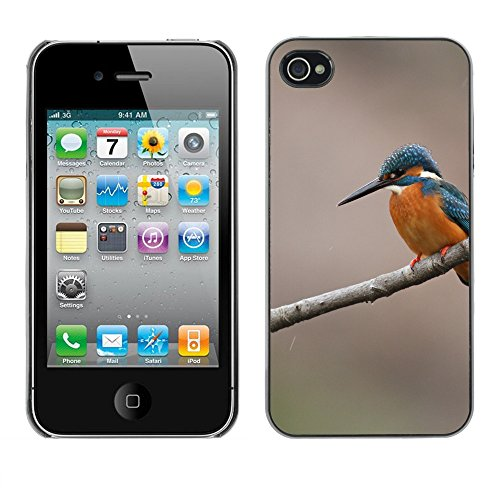 Premio Sottile Slim Cassa Custodia Case Cover Shell // F00014441 oiseau // Apple iPhone 4 4S 4G