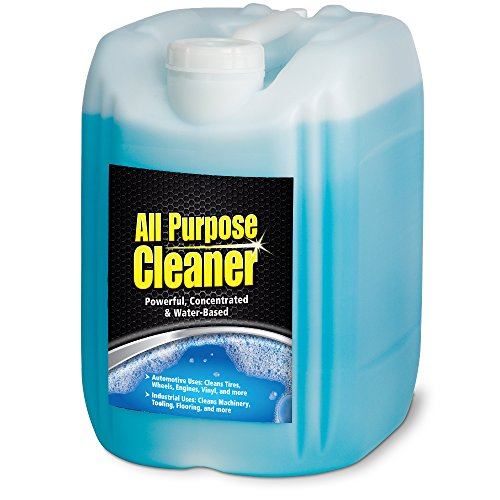Stoner Car Care Pro A538PL Concentrated All Purpose Cleaner - (Stoner Carpet)