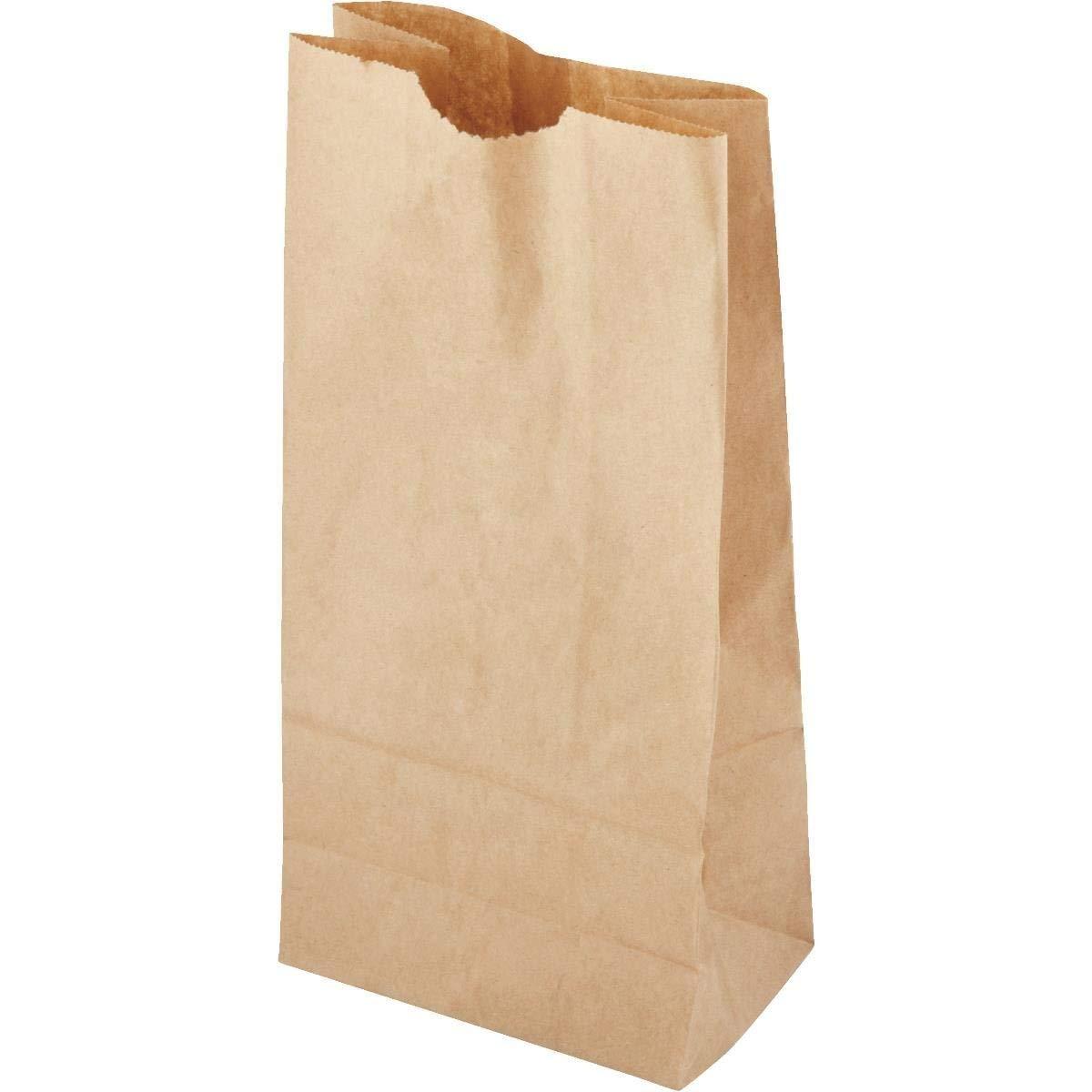381588783f9d Paper Lunch Bag - Smart Savers