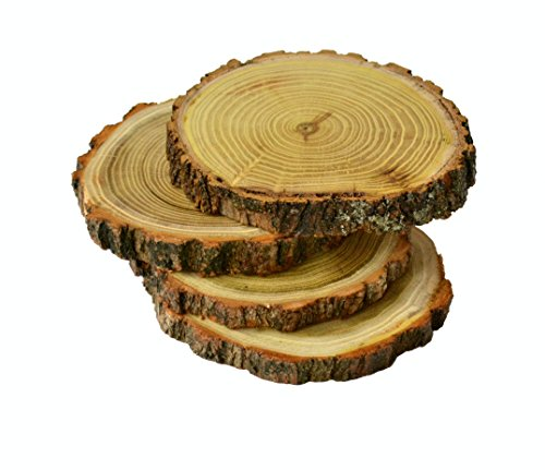 Handmade Wood Coaster 5,2″-5,5″ Set of 4 Rustic Natural Stand for Tea Coffee Latte Cup (Set of 4 (Acacia Wood large)) Tree Bark Slice