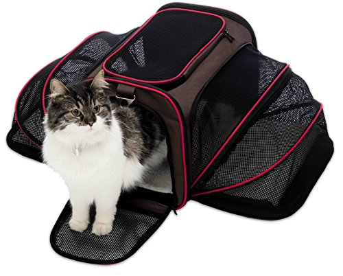 Petyella Cat Carrier Pet Carrier for Small Dogs and Cats Expandable Soft Sided Crate for Pet - Airline Approved Medium Kennel Travel Bag - 2.8 lbs Dog Carriers with Bonus Blanket and Bowl,Dark Brown