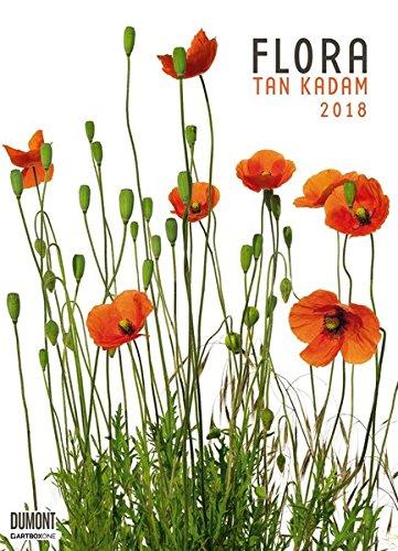 Flora 2018 – Blumen-Kalender von DUMONT– Poster-Format 49,5 x 68,5 cm