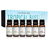 Best Edens Garden Essential Oil Diffusers - Premium Fragrance Oils - Tropical Bliss - Gift Review
