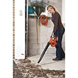 Efficient Design Cordless Lithium-Ion Single Speed Handheld Lawn Sweeper