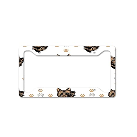 AMERICAN POLYDACTYL CAT CHROME Metal License Plate Frame Tag Holder